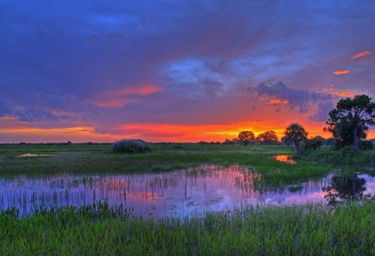 Everglades Nationaal Park