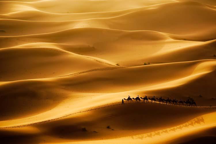 woestijnen op aarde